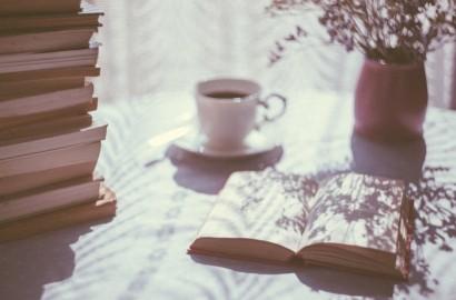 sugestões de consumo: livros que valem a pena [agora só para os adultos]